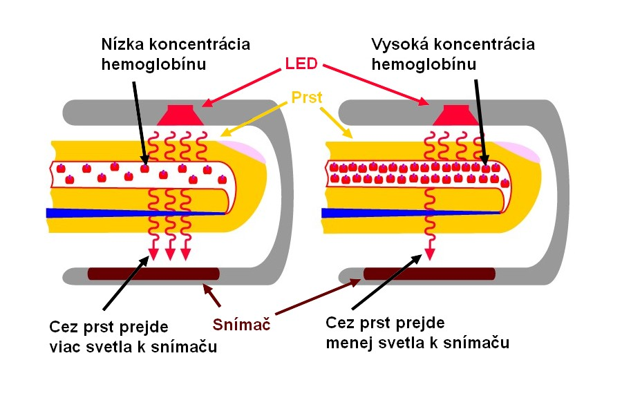 Ako funguje prstový pulzný oximeter – názorný ilustrovaný princíp